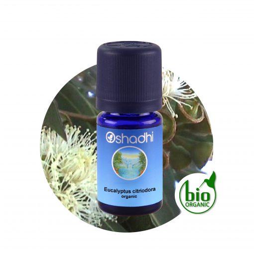 oshadhi eukaliptusz illóolaj aromaterápia Fájdalomcsillapító, antibakteriális, gyulladásgátló, antiszeptikus, görcsoldó, köhögéscsillapító, nyákoldó, köptető hatású. Fejfájás, migrén esetén is használhatjuk. Csecsemőknél, kisgyermekeknél ne alkalmazzuk!