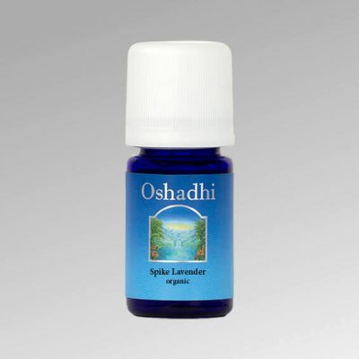 oshadhi-levendula-vad-spike-illoolaj