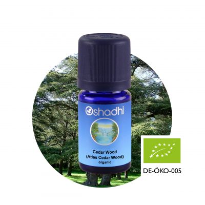 Cedar Wood (Atlas Cedar Wood) organic Oshadhi illóolaj aromaterápia
