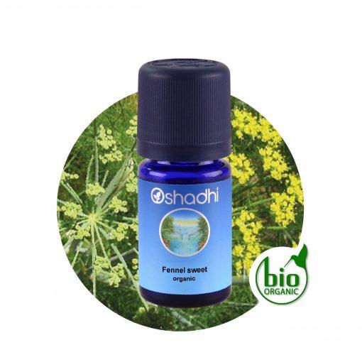 Édeskömény, bio. Foeniculum vulgare dulce, sweet fennel illóolaj, Oshadhi aromaterápia
