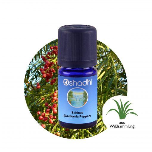 Schinus (California pepper), Borsfa illóolaj, Oshadhi aromaterápia