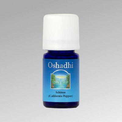 oshadhi-borsfa-illóolaj