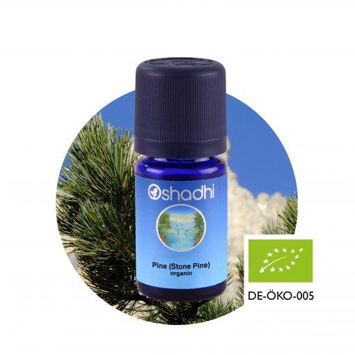 Cirbolyafenyő bio, stone pine, (Pinus cembra) 10 ml, Oshadhi aromaterápia